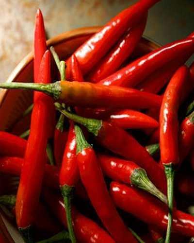 Makanan yang Dapat membantu Membakar Lemak Perut